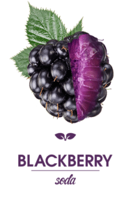 Smart Soda Blackberry