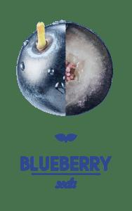 Smart Soda Blueberry