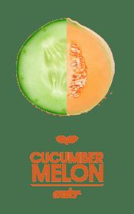 Smart Soda Cucumber-Melon