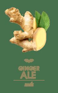 Smart Soda Ginger-Ale