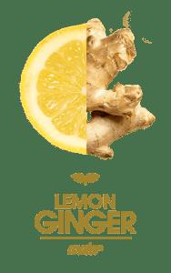 Smart Soda Lemon-Ginger